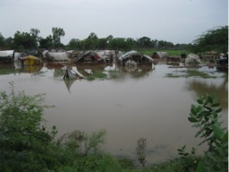 Description: C:Documents and SettingsAdministratorDesktopKasur 2011Gypsy Comp2...Gypsy camp affected by flood helplessly..JPG